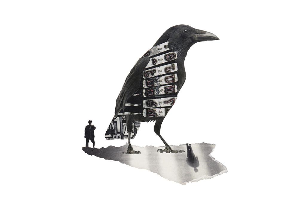 Los días contados - Cuervo