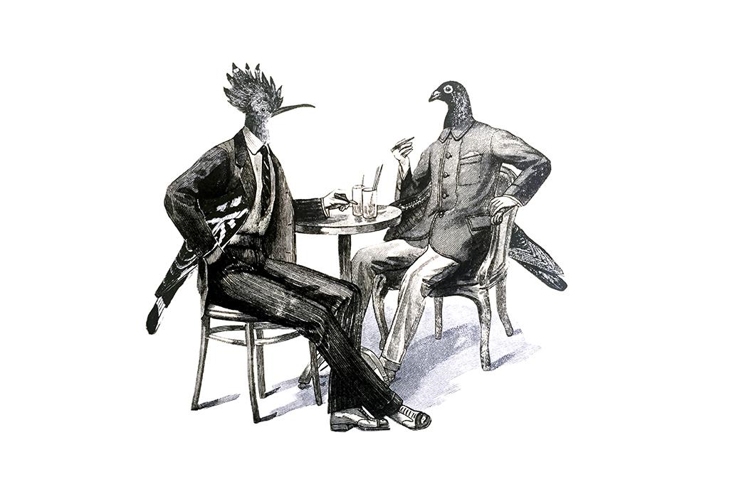 Los días contados - Pájaros